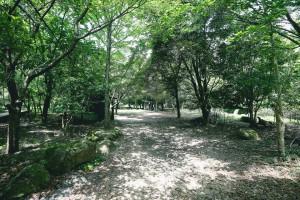 桐生キャンプ場11